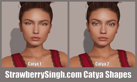 StrawberrySingh.com Catya Shapes