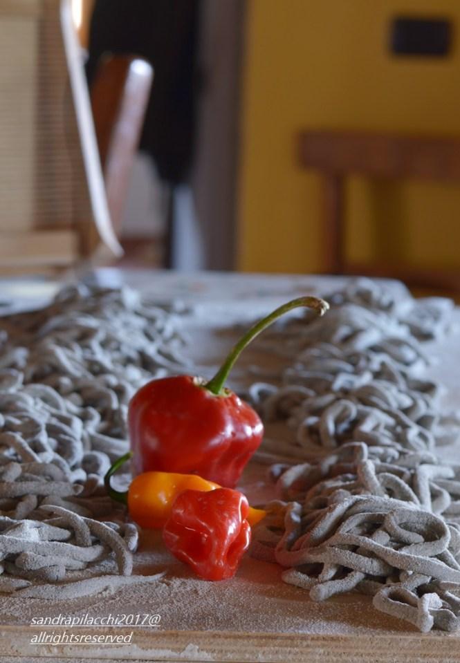 spaghettoni grano arso DSC_0561