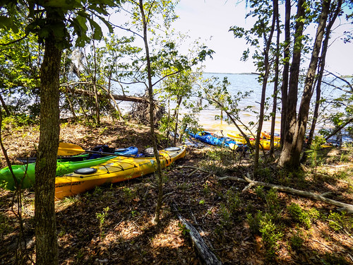 Paddle to Church Island with the Tri-County Blueways Paddlers-101