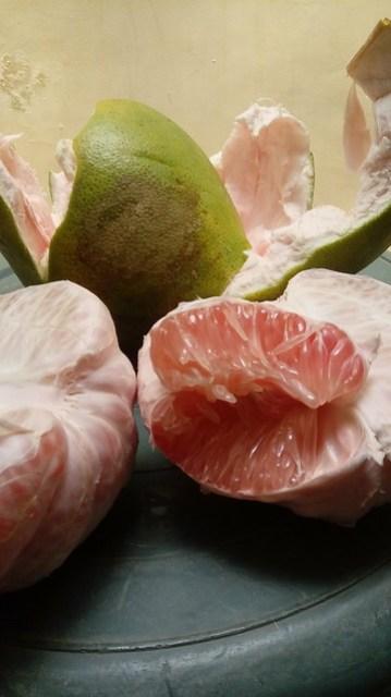 Jeruk bali / pomelo dengan warna bulir kemerahan