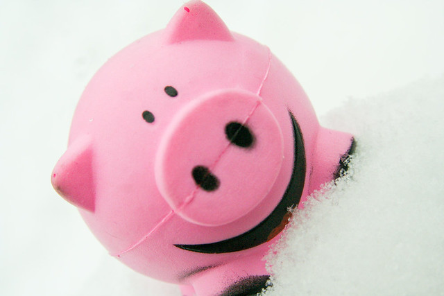 Smile Pink Squishy Pig In Snow 2 24 10 3 For Macro