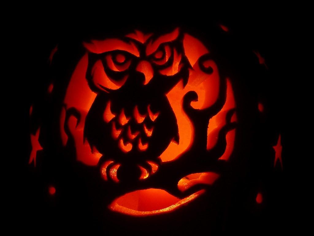 Owl Pumpkin Carving Template