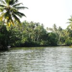 3 network down Poovar Backwaters, Neyyar River, Kerala | The Kerala ...