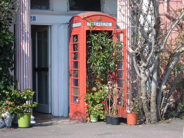 Travelling Dijuca Dover cabina plantas