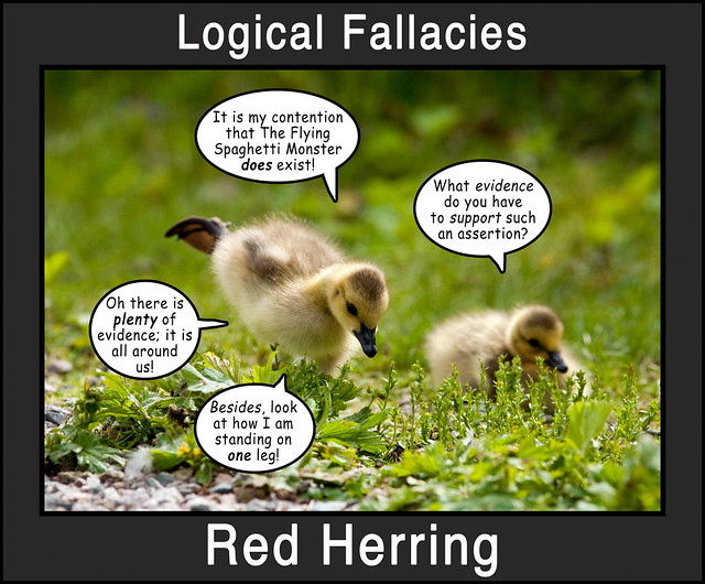 Logical Fallacies 3 Flickr