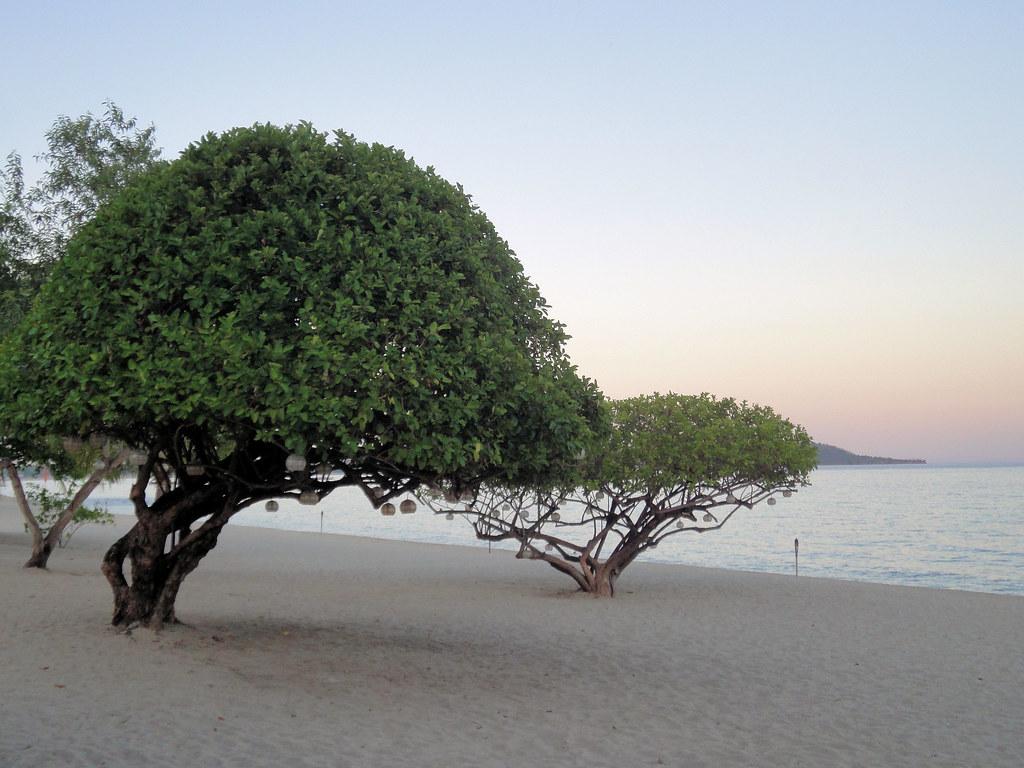 Virgin Resort Laiya Batangas Beach