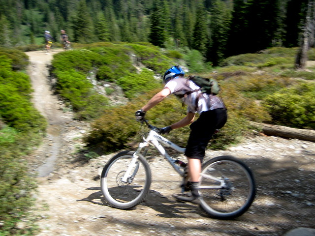 Image Result For Downieville Mountain Biking