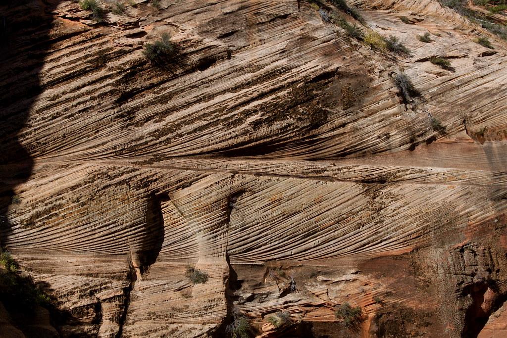 Sandstone Cross Bedding Along The Angel S Landing Trail