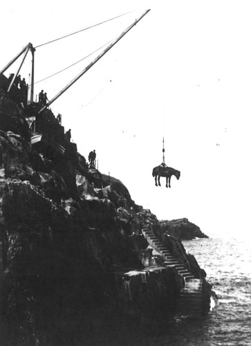 Landing A Horse At Flannan Isle Lighthouse You Can Find