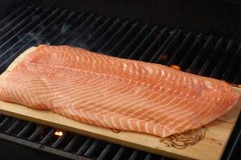 نتيجة بحث الصور عن pink salmon