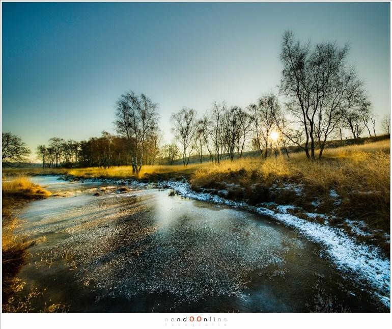 Maasduinen op een winterochtend in januari (Laowa 12mm op EOS 5D mark III - f/11 - ISO100 - t=1/50sec)