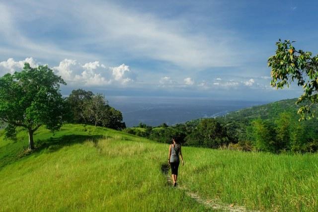 Mt Lanaya, Alegria, Cebu-14