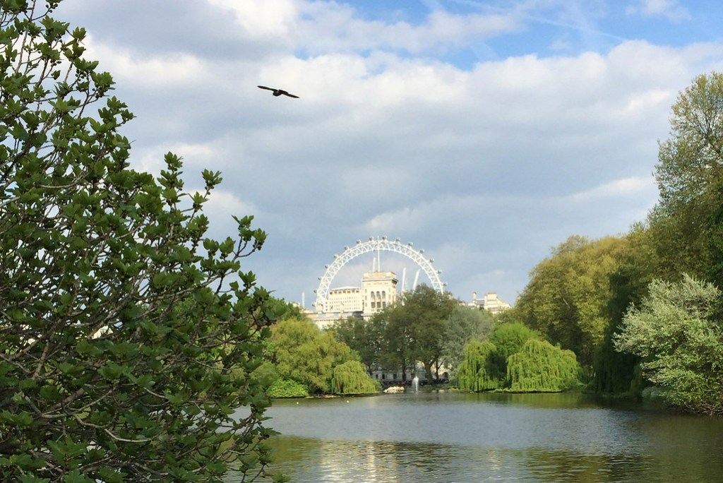 London St James Park London Eye Lake LadyofStyle
