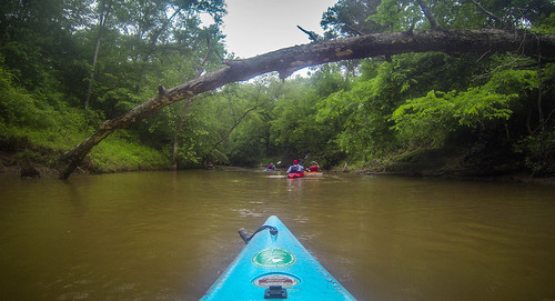 Long Cane Creek with Lowcountry Unfiltered-19