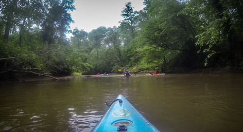 Long Cane Creek with Lowcountry Unfiltered-17