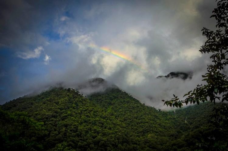 Atardecer en el Parque Nacional del Manu
