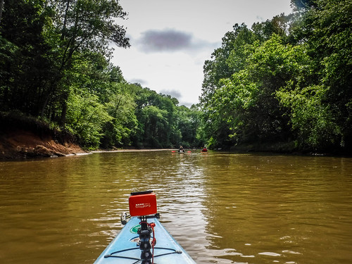 Long Cane Creek with Lowcountry Unfiltered-155