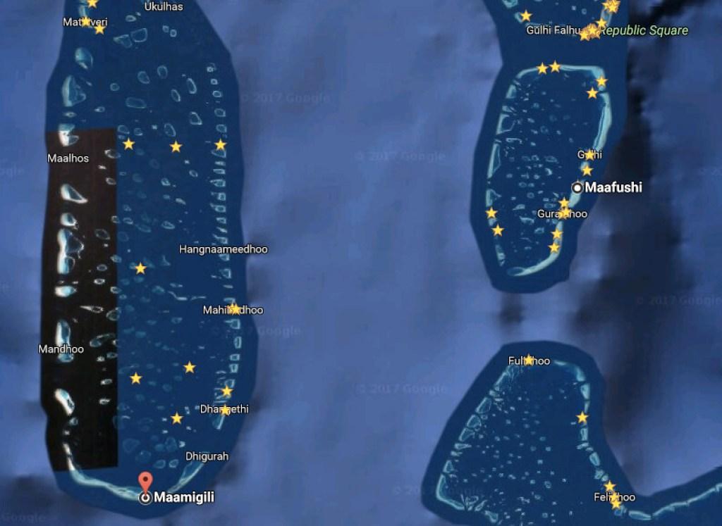 馬爾地夫鯨鯊