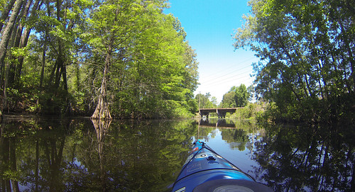 Old Santee Canal-106