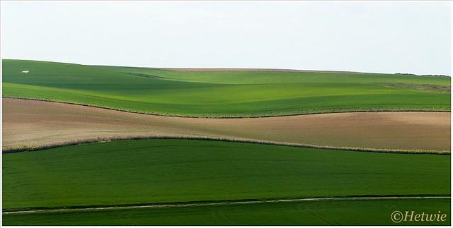 De groene heuvels