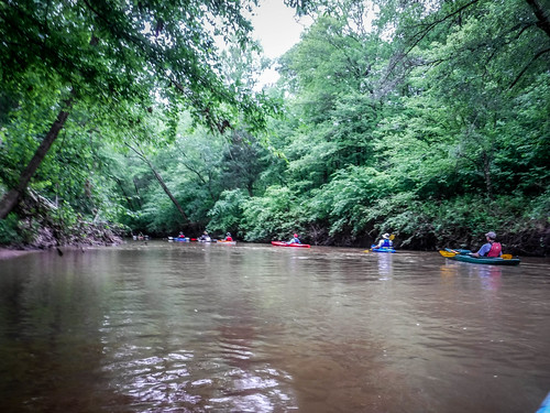 Long Cane Creek with Lowcountry Unfiltered-88