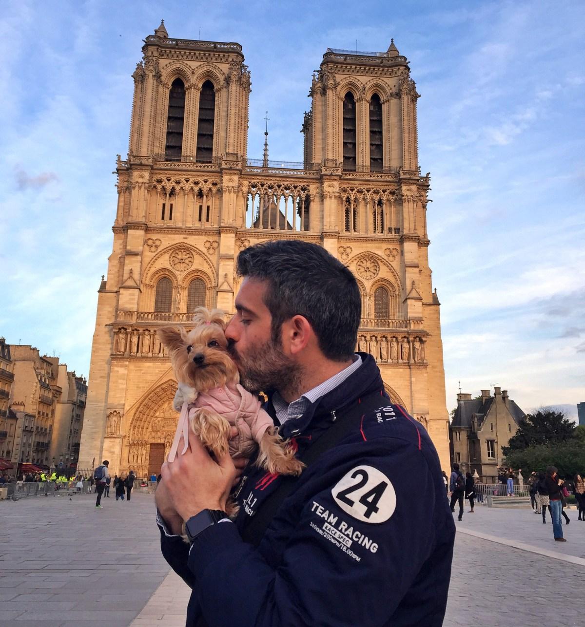 Viajar a Paris con Perro - Travel to Paris with dog viajar a paris con perro Viajar a Paris con perro 34560003436 24211fec2c h