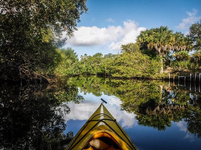 Indian River Paddling-16