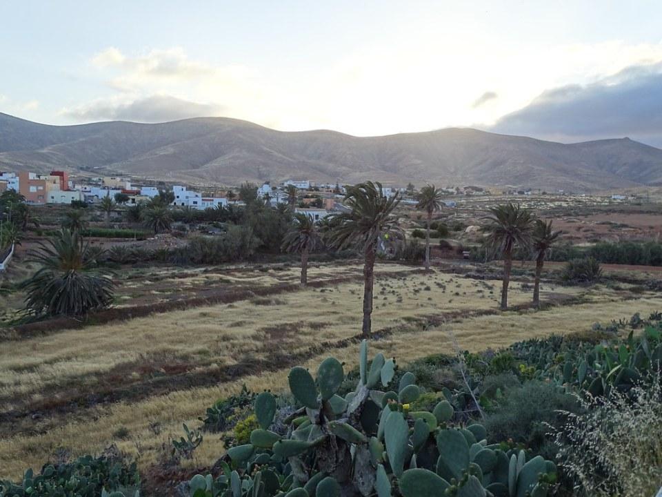 Antigua Municipio Isla de Fuerteventura 182