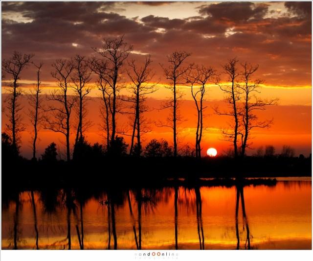 Heerlijke kleuren, mooie silhouetten, een fijn einde van de dag (100mm - ISO100 - f/8 - t=1/60sec bij -1EV)