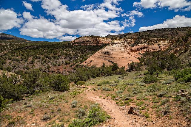 Trail & Sandstone