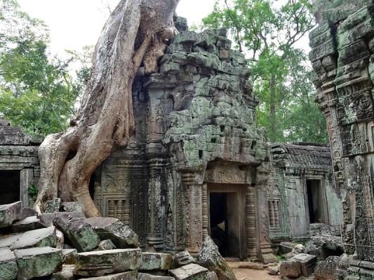 Ta Prohm, Tomb Raider Temple, Siem Reap, Cambodia - the tea break project solo travel blog
