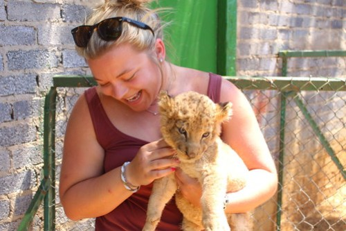 Baby lion!