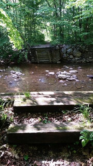 20170603_Tea_Creek_Wilderness_057