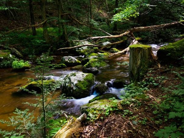 Rapidan River