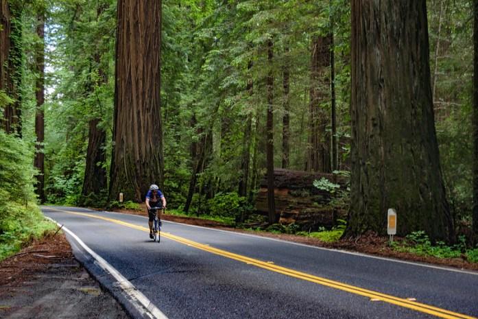 Ciclista en la Avenida de los Gigantes - California State Route 254 - road tip travel