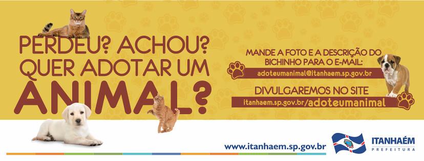 Prefeitura e entidades protetoras lançam campanha para estimular a adoção de animais