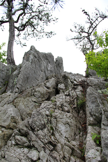 20170526_Seneca_Rocks_013