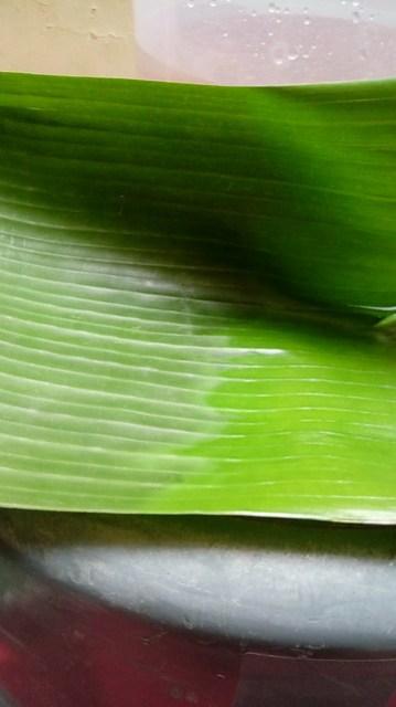 Daun pisang yang sudah berubah warna sebagian karena dipanaskan