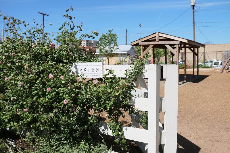 magnolia-silos-garden-15