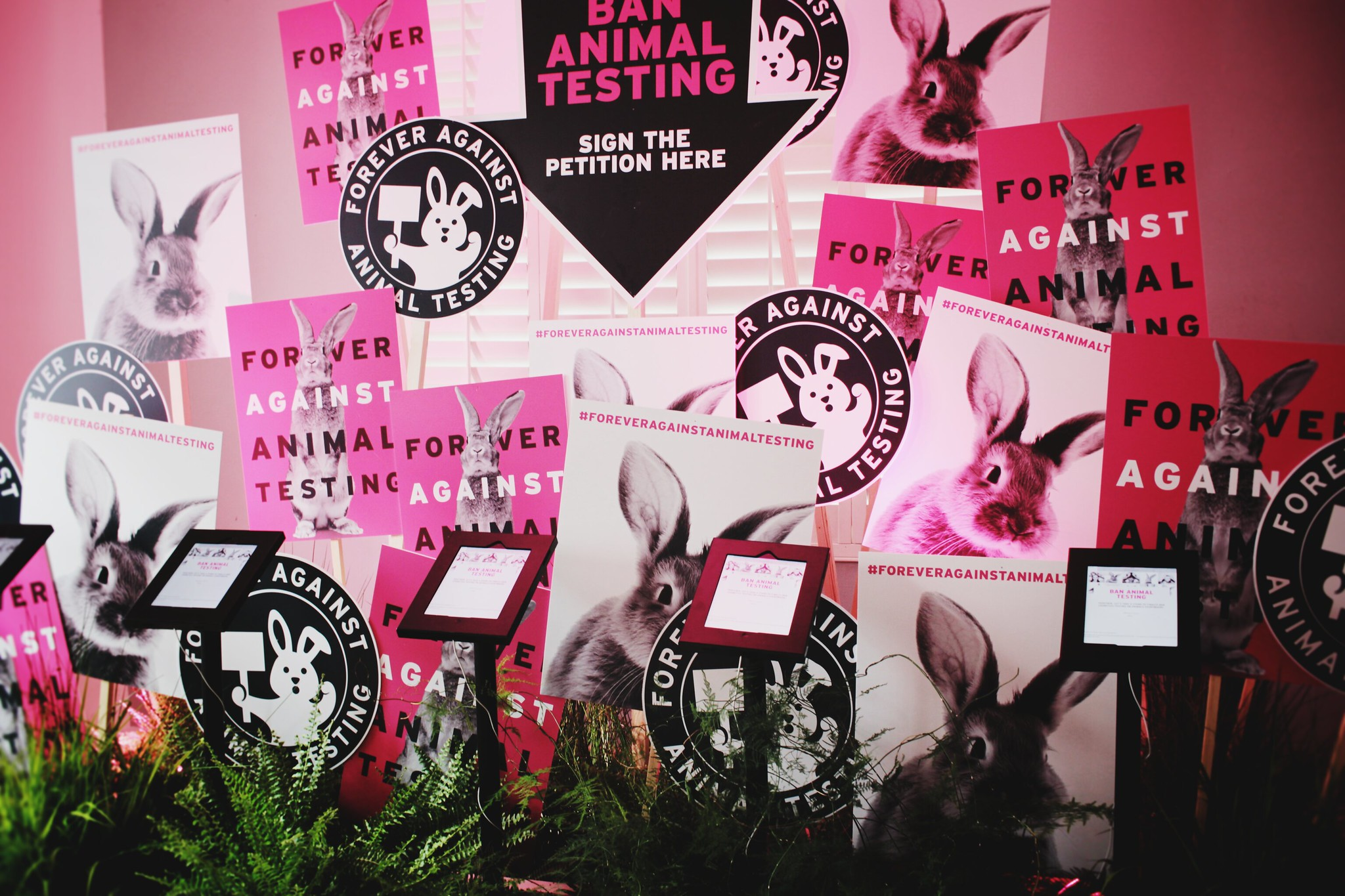 eläinkokeeton kosmetiikka