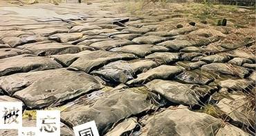 中寮旅遊︱粗坑大峭壁、棋盤石風景區.被遺忘的自然風景