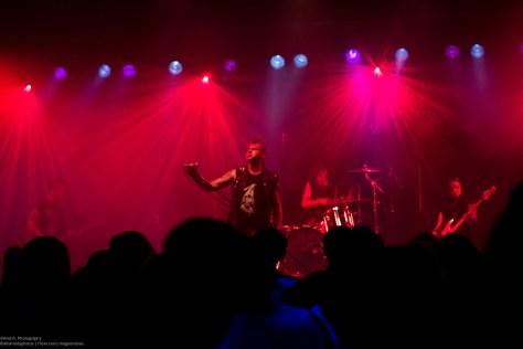 Gothic Pogo Concerts