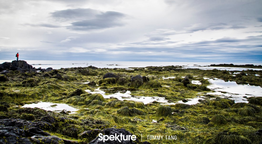 Iceland-28