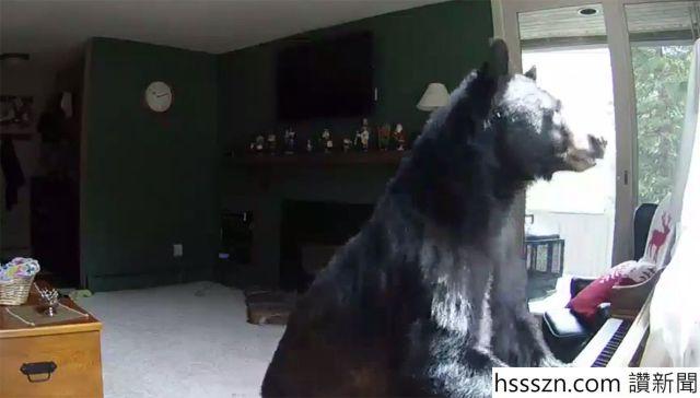 bear-vail_1186_675