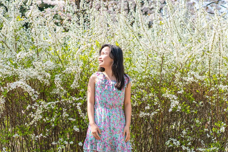 Spring in Korea_1