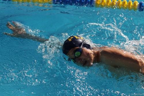 Meeting natation Vevey