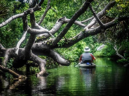 Juniper Springs Creek-114