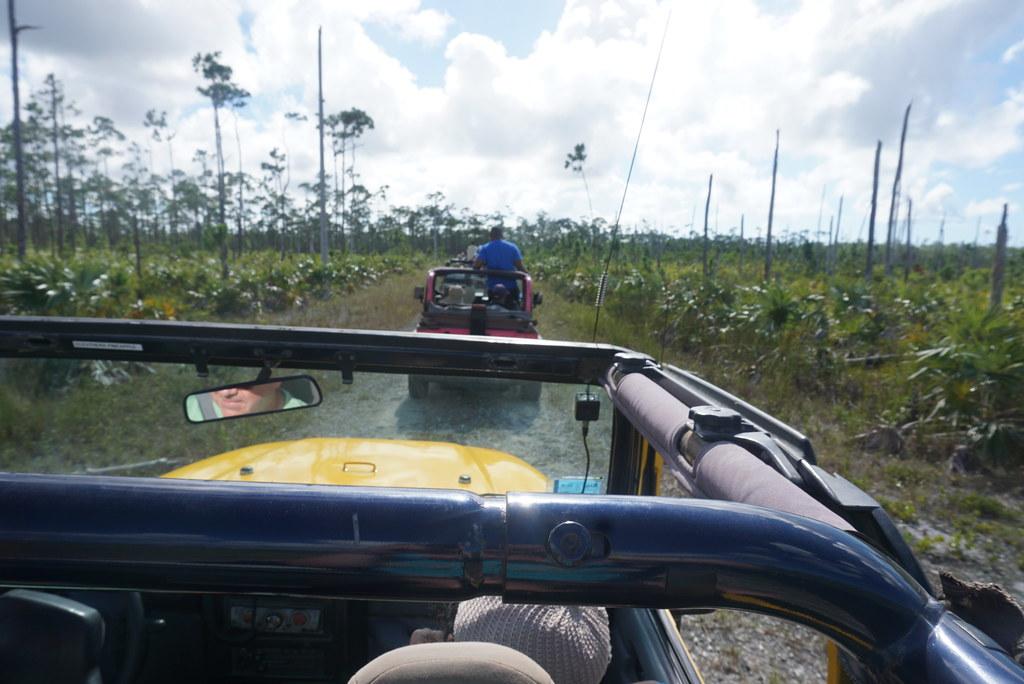 grand bahama island jeep tour