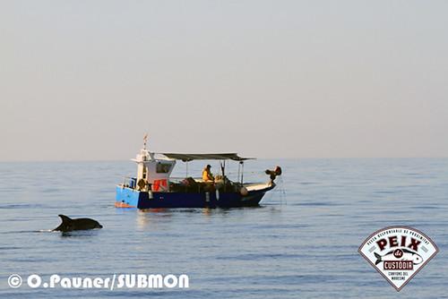 Pescadores artesanales y delfines