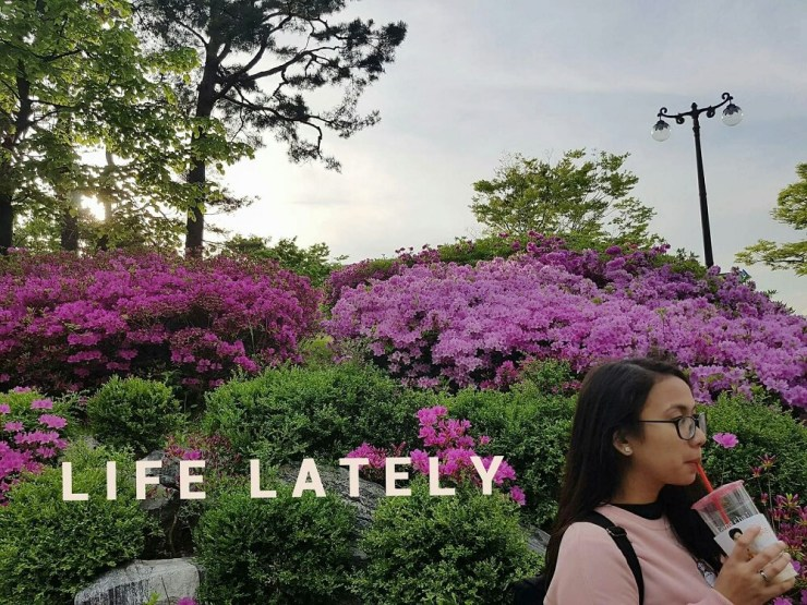 Life Lately - August